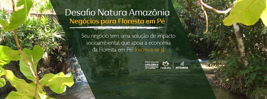 Natura e Artemisia buscam empreendedores de negócios de impacto com foco na Amazônia